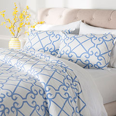 City Scene Bonnie Blue Comforter & Duvet Set