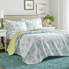 Laura Ashley Cape Coral Quilt Set