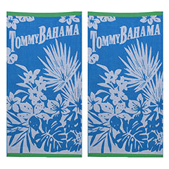 Fiji Blue 2-Piece Beach Towel Set